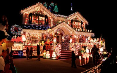 Christmas Lights Survival Guide
